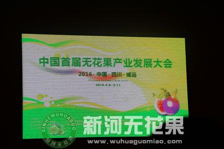 第五届中国无花果产业发展大会[1]