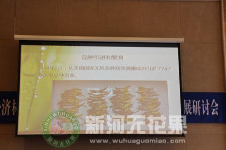 中国经济林协会无花果分会成立大会[3]